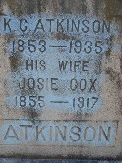Nancy Josephine Josie <i>Cox</i> Atkinson