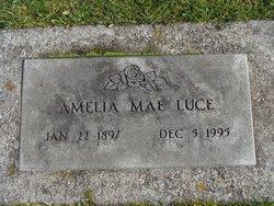 Amelia Mae <i>Hoskins</i> Luce