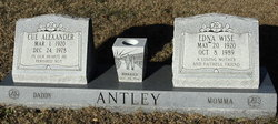 Cue Alexander Antley