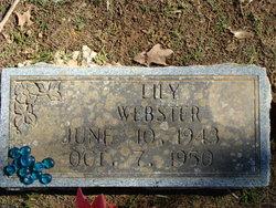 Lily Webster