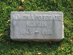 Almeria <i>Posegate</i> Nelson
