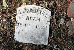 Elizabeth E Adam