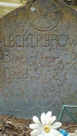 Albert Butler Brown