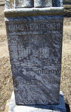Catherine Sarah E <i>Morrow</i> Haralson