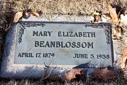 Mary Elizabeth Beanblossom