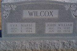 John William Wilcox