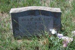 Amalie <i>Pokorny</i> Alewine