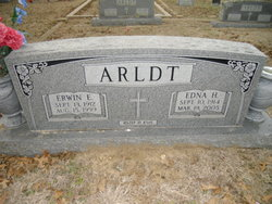 Erwin E. Arldt