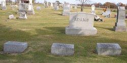Alice J Adams