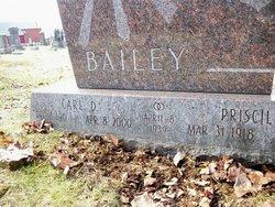 Carl Darwin Bailey