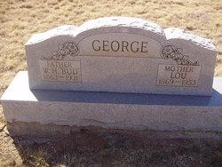 William Henry Bud George