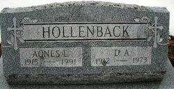 David A Hollenback