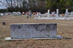 William Medicus Cook