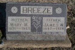 Mary M <i>Barton</i> Breeze
