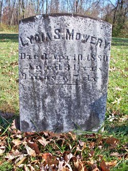 Lydia S Mowery