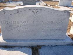Elizabeth R Lizzie <i>Parrish</i> Adams