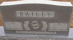 Phearbia Elizabeth <i>Johnson</i> Bailey