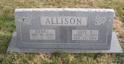 Guy Edwin Allison