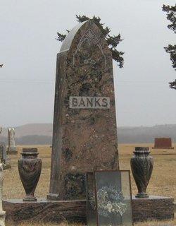 Annie <i>Lane</i> Banks