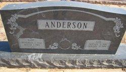Bart Anderson