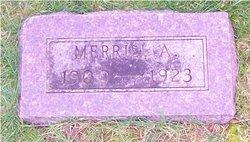 Merrill A. Anderson