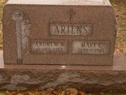Andrew N. Ariens