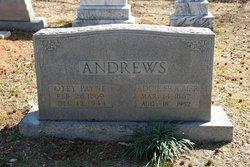 Otey Payne Andrews