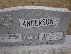 Samuel A Anderson