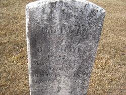 Mary Ann <i>Jennings</i> Hays