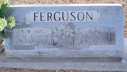 Samuel Benjamin Nig Ferguson