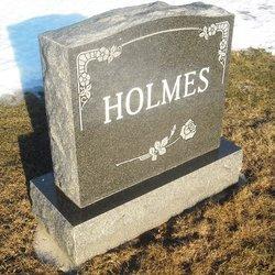 Allan L Holmes