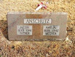 Amelia Anschutz