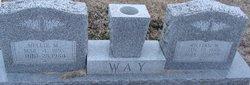 William Walter Way