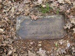 Anna E. <i>Burden</i> Cobb