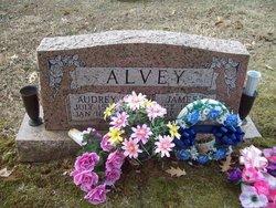 Audra L Audrey <i>Prather</i> Alvey
