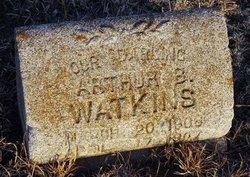 Arthur B. Watkins