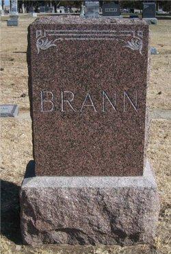 Henry B Brann