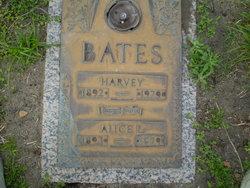 Alice Lee <i>Chestnut</i> Bates