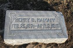 Henry B Hamann