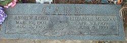 Elizabeth Minerva Carr