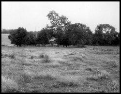 Coble Cemetery