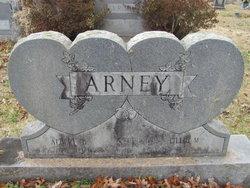 Albert Baker Arney
