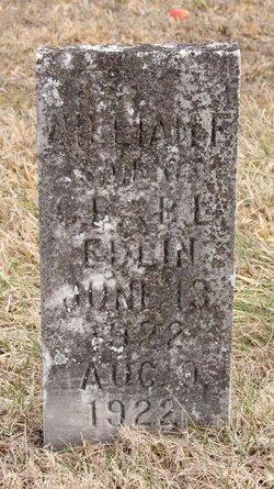 William F Edlin