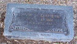 Arthur Young Carpenter
