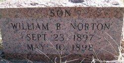 William B Norton