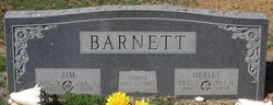 Jim Carroll Barnett