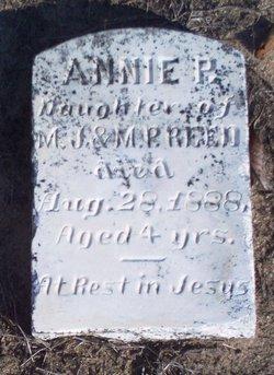Annie P Reed