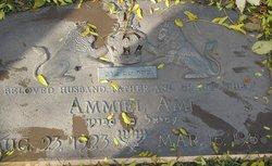 Ammiel Ami