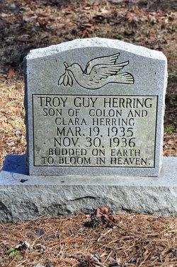Troy Guy Herring