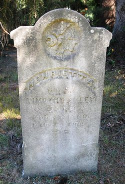 Henrietta A. Hitty <i>Blood</i> Bailey